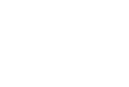Flight Light, Inc. Logo